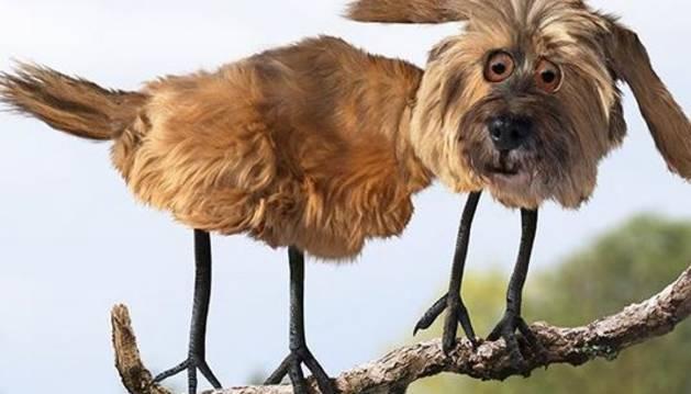 ¿Cómo serían los animales en realidad si fueran como los pintan los niños?