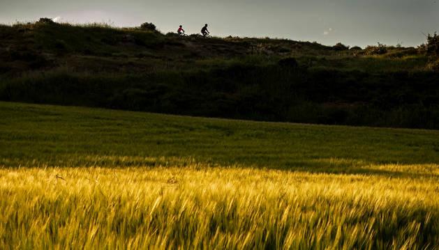 Foto de un padre y un hijo paseando en bicicleta este fin de semana en Ayegui.