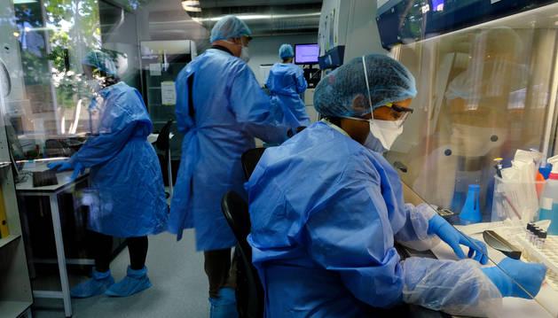 Investigadores trabajan en la búsqueda de un vacuna contra la Covid-19.
