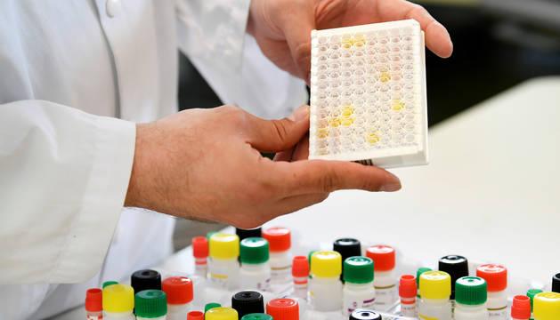 Investigación en un laboratorio de Amsterdam.