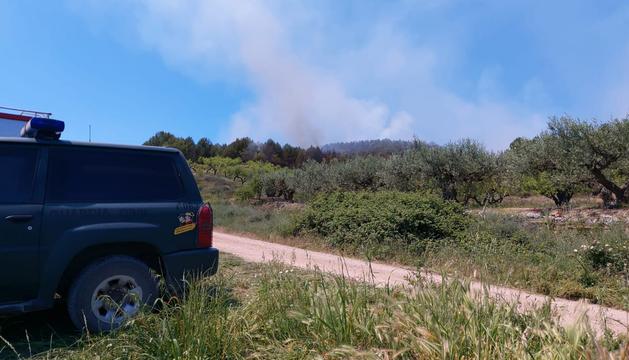 Fotos del incendio forestal que ha dejado una víctima mortal en Los Arcos.