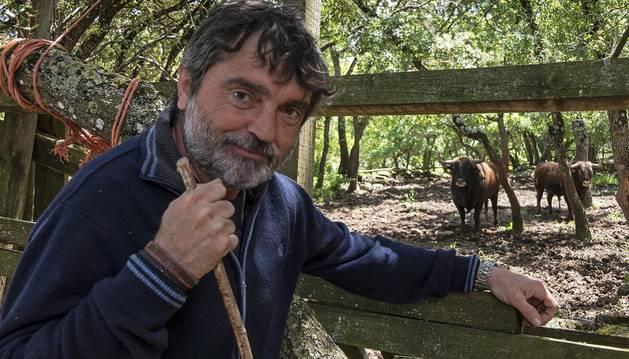 Miguel Reta Azcona, con una vara -aunque esta de ganadero- en su finca de Grocin donde se dedica a la crianza de toros de casta navarra.