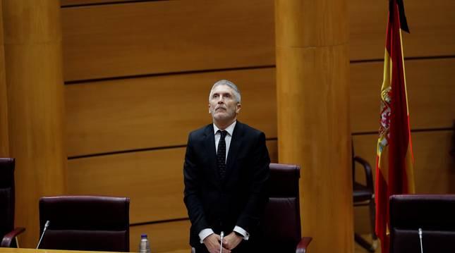 Foto del ministro del Interior, Fernando Grande-Marlaska, guarda un minuto de silencio por las víctimas de la pandemia del coronavirus.