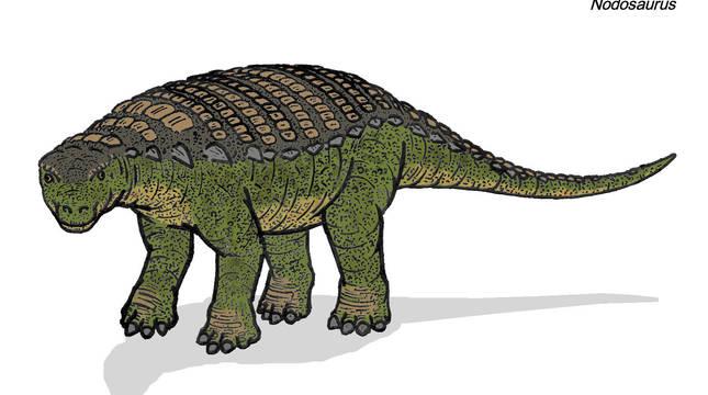 El último banquete de un dinosaurio de 1.300 kilos, al descubierto
