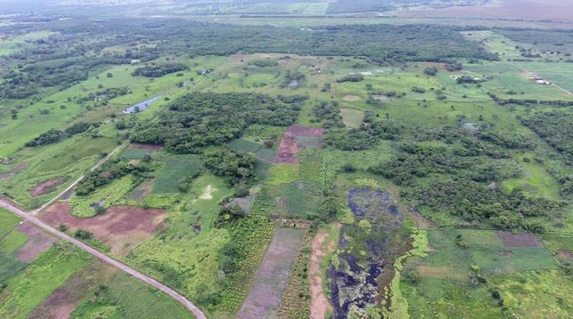 Vista aérea del terreno donde se asienta la estructura Aguada Fenix, en el estado mexicano de Tabasco.