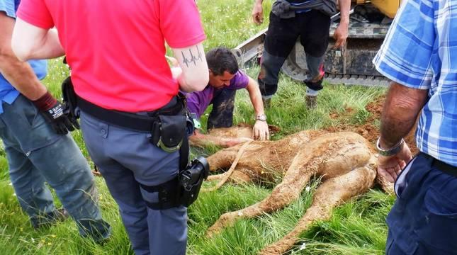 Fotos del rescate de un potro atrapado en una sima en Isaba