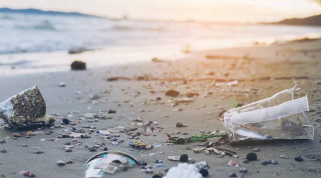 38 erasmus, obligados a limpiar una playa gallega tras un botellón