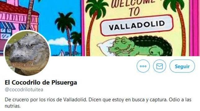 El cocodrilo del Pisuerga 'se abre' una cuenta en Twitter: