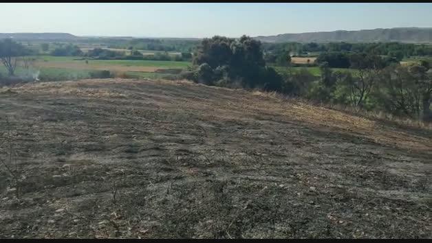Incendio forestal en Carcastillo