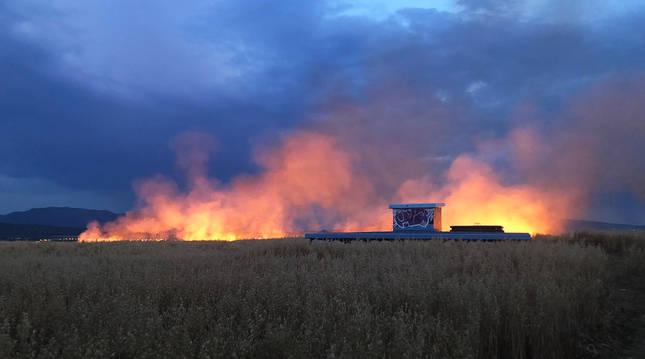 Las llamas afectaron a un campo de cereal y prendieron con rapidez.