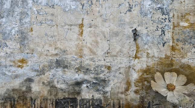 Detalle de una muralla