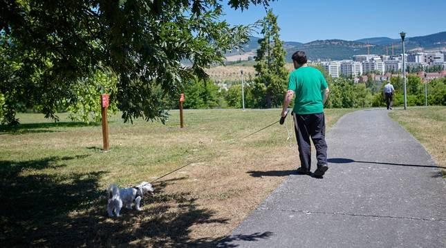 Un joven pasea a su perro este fin de semana en Mendillorri.