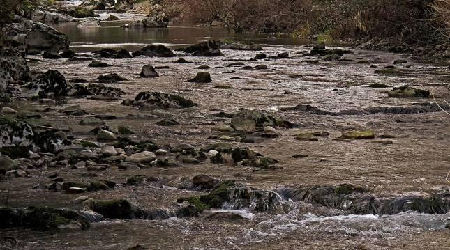 Foto de las aguas del río Ubagua, cerca de su nacimiento en Riezu.