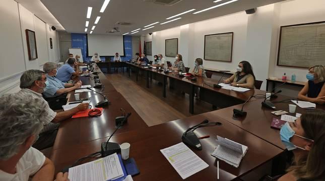 Los asistentes al Consejo Navarro de Salud escuchan a la consejera Santos Induráin, sentada al fondo, junto a Carlos Artundo.