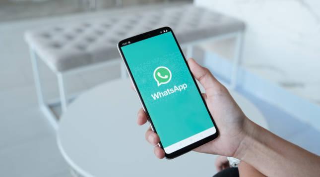 Imagen del logo de WhatsApp visible en un smartphone