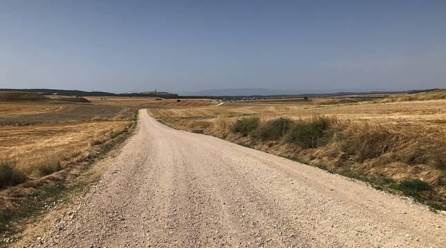 Uno de los caminos reformados