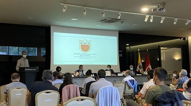 La Asamblea General Ordinaria y Extraordinaria de la FNF se celebró ayer en el Hotel Tres Reyes.
