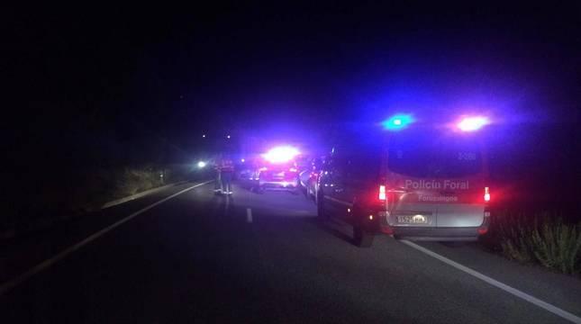 Agentes de la Policía Foral y bomberos del parque de Tafalla se desplazaron al lugar del accidente.