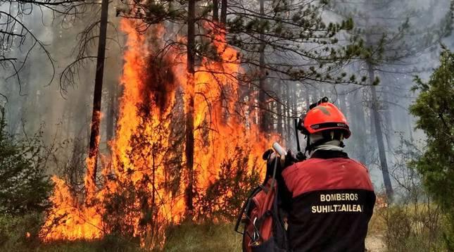 Imagen facilitada por los bomberos forestales de Navarra.