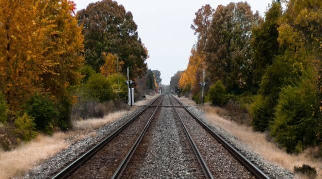 Vista de las vías de tren en mitad de un paraje natural