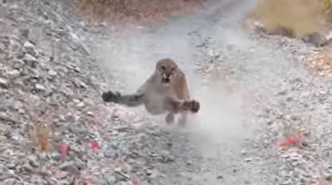Captura del vídeo que ha subido el excursionista a las redes.