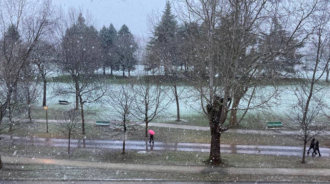 La nieve cae sobre Pamplona a primera hora de la mañana