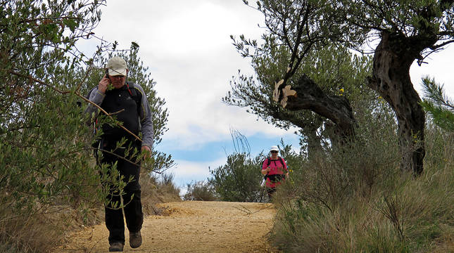 Dos peregrinos llegan al término municipal de Estella por el camino que llega de Villatuerta (GR-65).