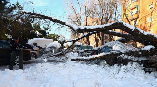 Madrid calcula que Filomena causó daños por valor de más de 1.398 millones