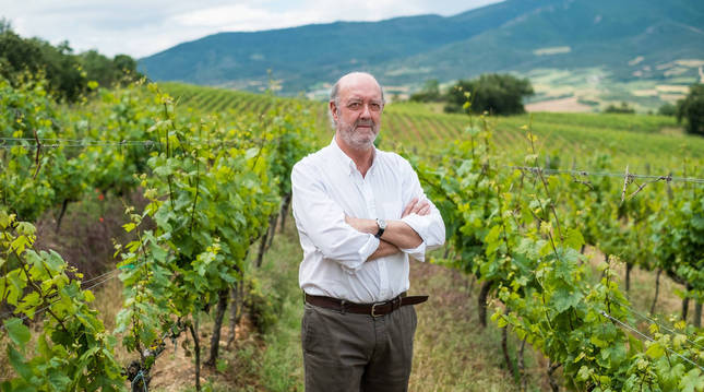 Julián Chivite López, en el viñedo de Legardeta, donde quiere construir una bodega de la mano de la familai Suqué una vez que remita la pandemia.