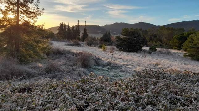 Fotos del invierno de los lectores 2020