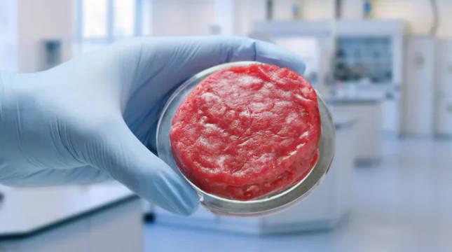Una muestra de carne artificial en un laboratorio.