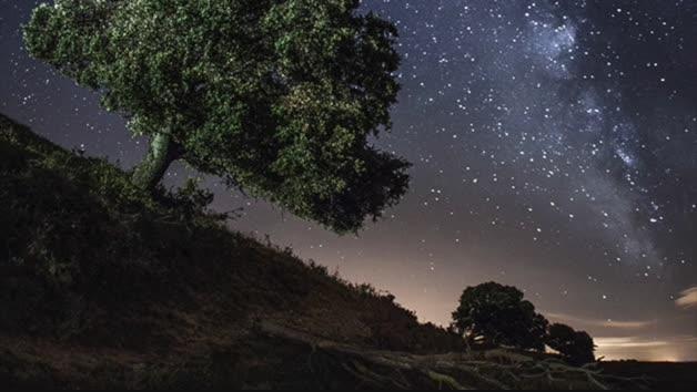 vídeo Roncal starlight
