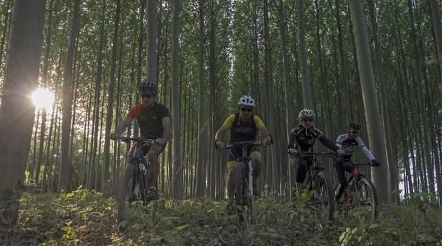 Cuatro ciclistas disfrutan de uno de los paisajes propuestos por el Espacio BTT Tierra Estella-Lizarraldea.