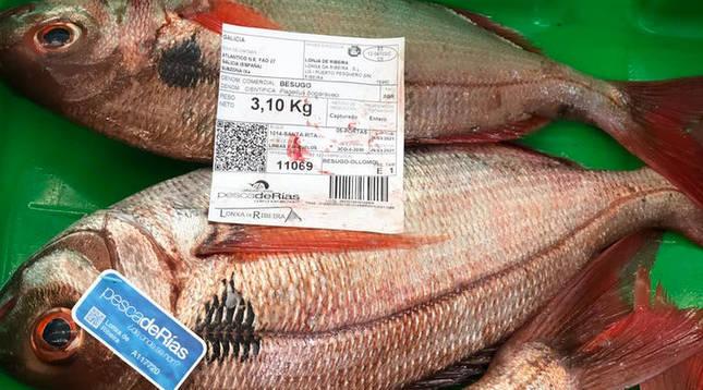 Besugos certificados con etiquetas pescadeRias (flota artesanal) y Pescaenverde (bajo huella de carbono) en una subasta en la lonja de Ribeira (A Coruña).
