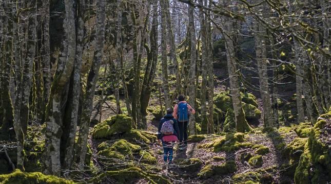 Un grupo de personas practica el senderismo el pasado fin de semana en la sierra de Urbasa.