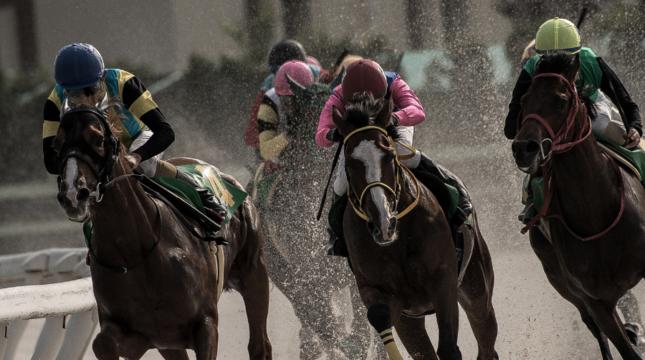 Algunas organizaciones criminales utilizan las carreras de caballos para lavar dinero.