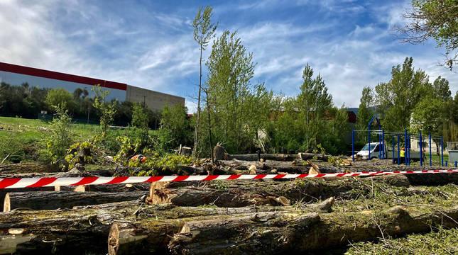 Parte de los troncos depositados en la zona ajardinada junto a la regata.