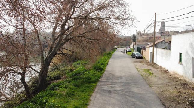 Camino de acceso a la Mejana en Tudela.