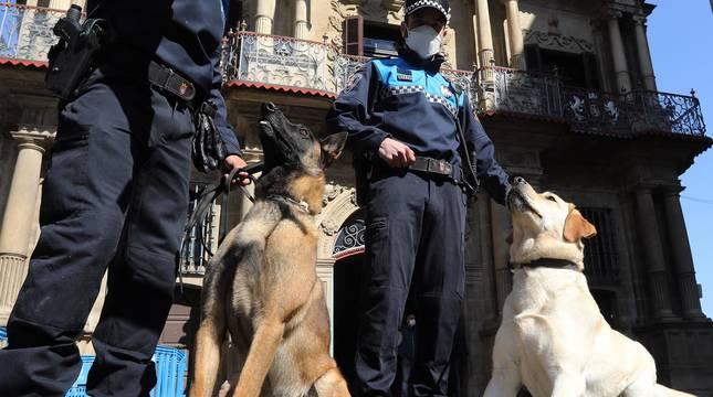 La Unidad Canina de la Policía Municipal presenta a sus dos nuevos 'agentes'