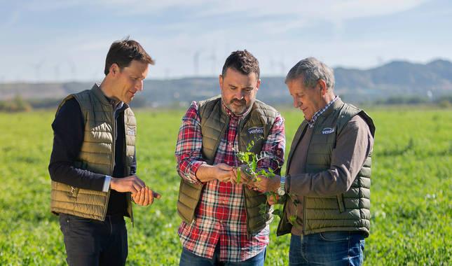 De izquierda a derecha: Alberto Torres (agricultor), el chef Ander González y el agricultor Ignacio Torres, en un campo de guisantes.