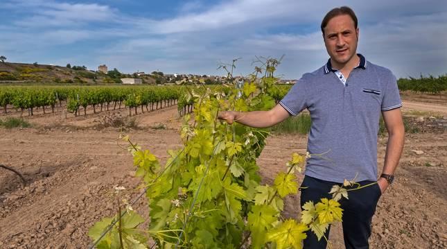 Jorge González es el representantes de más de 700 viticultores navarros en La DOCa Rioja.