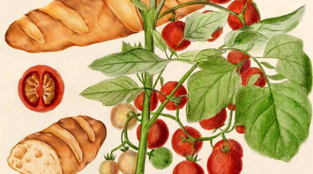 El pan con tomate está presente en los desayunos de muchos hogares.