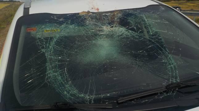 Imagen del estado en el que quedó el coche tras accidentarse contra un buitre.