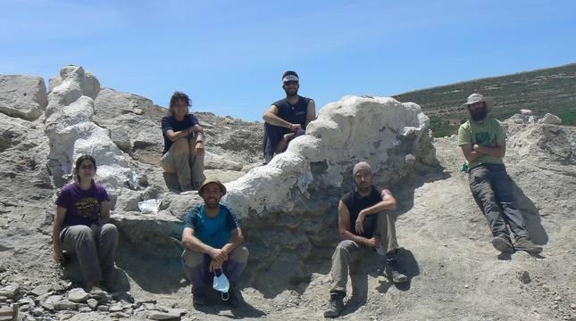 Los fósiles de unos 145 millones de años hallados en Camarillas incluyen parte de una columna vertebral de más de 5 metros.