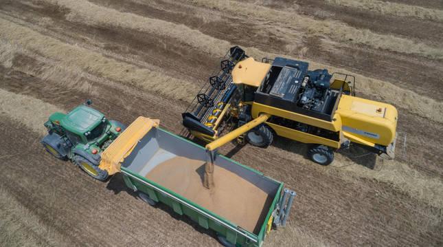 Una cosechadora descarga el grano en el remolque de un tractor.