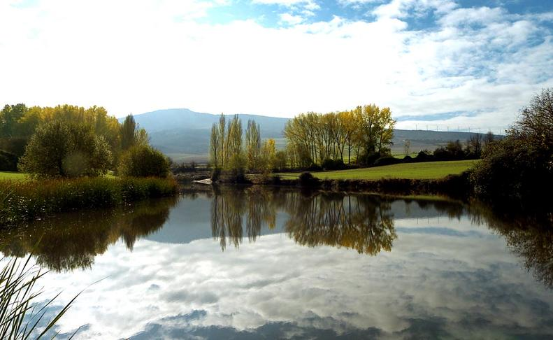 Imágenes de los lectores del otoño en Navarra JUAN JOSÉ GONZÁLEZ