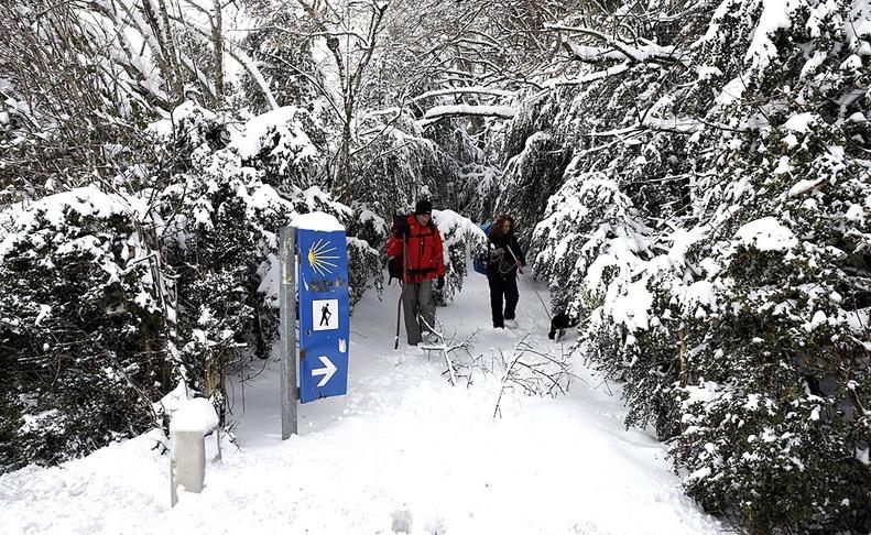 Nieve en Navarra.AGENCIAS