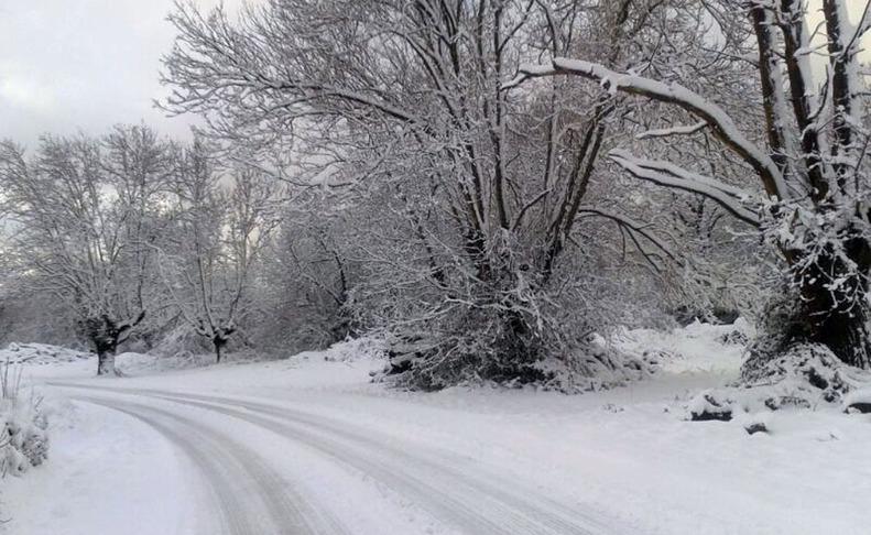 Nieve en el norte de Navarra. M.L..EFE