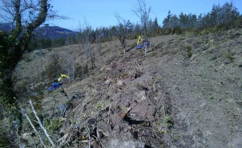 Trabajos de preparación de una reforestación en Esparza de Salazar.