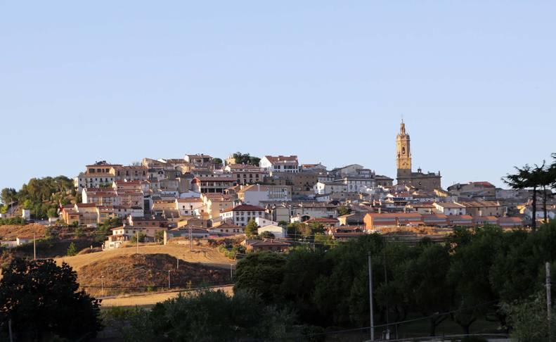 Vista general de la localidad de Mendigorría.